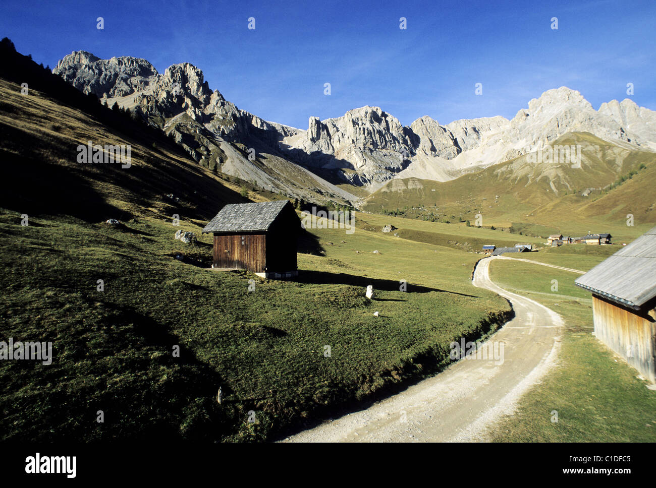Italy, Venetie, Dolomites naturel Park, San Pellegrino pass Stock Photo