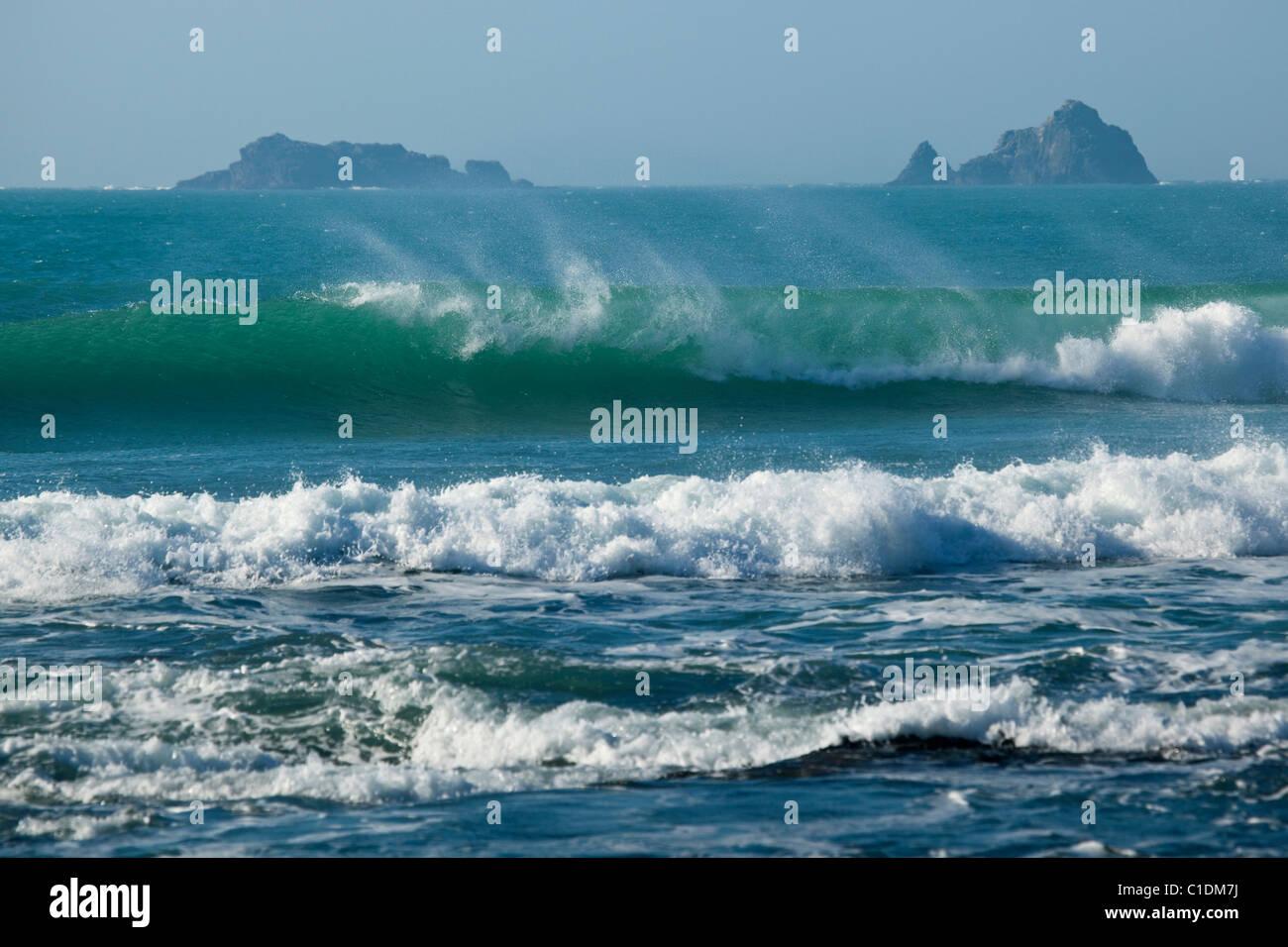 St George Island Windsurfer