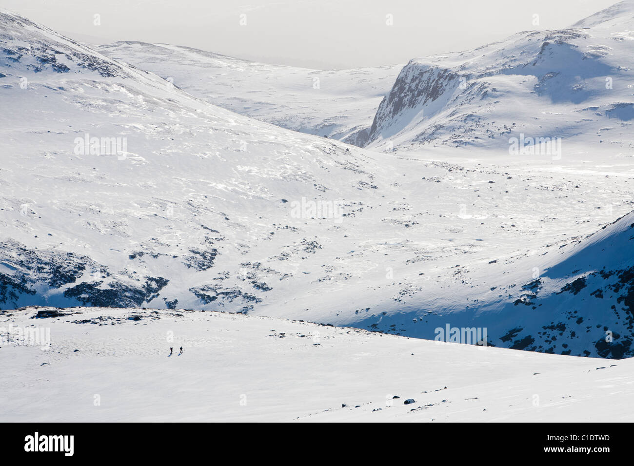 Ski mountaineers on the Cairngorm Plateau in full winter conditions, Scotland, UK. - Stock Image