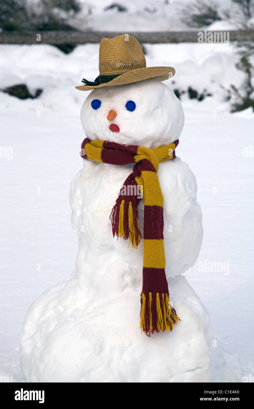 A snowman wearing a scarf and cowboy hat - Stock Image