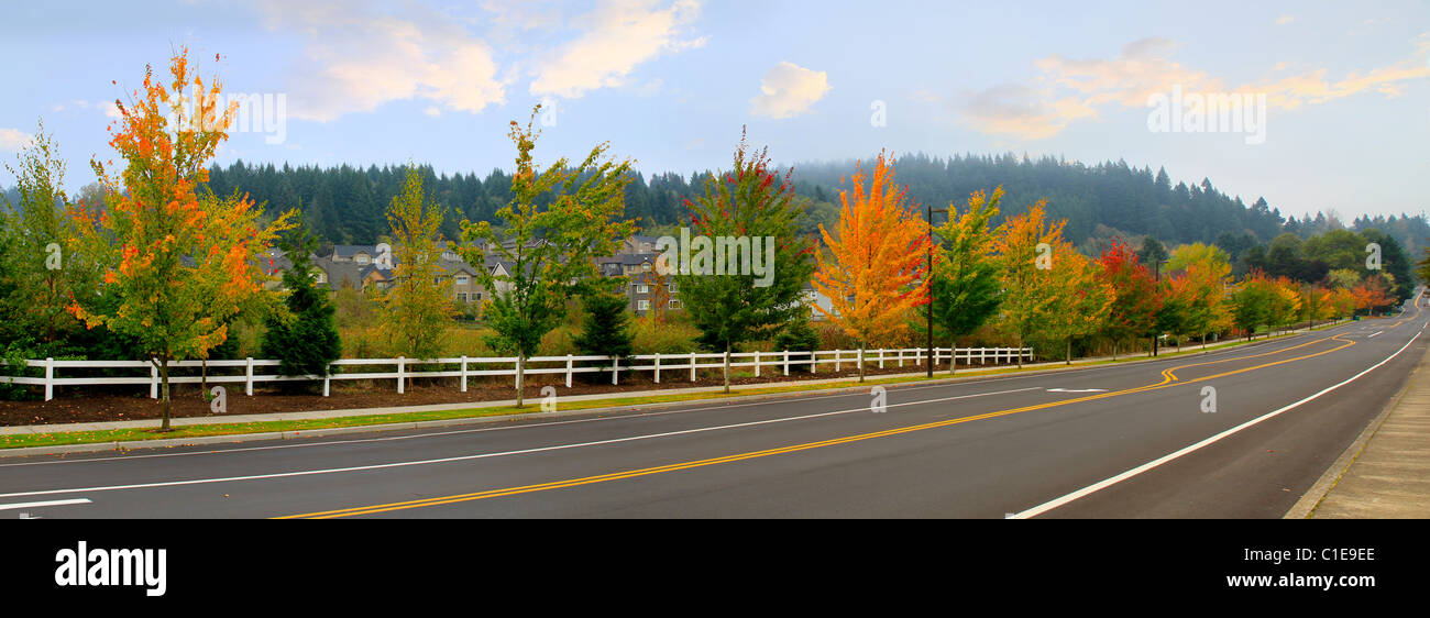 Suburban Residential Area Rural Road One Foggy Morning - Stock Image