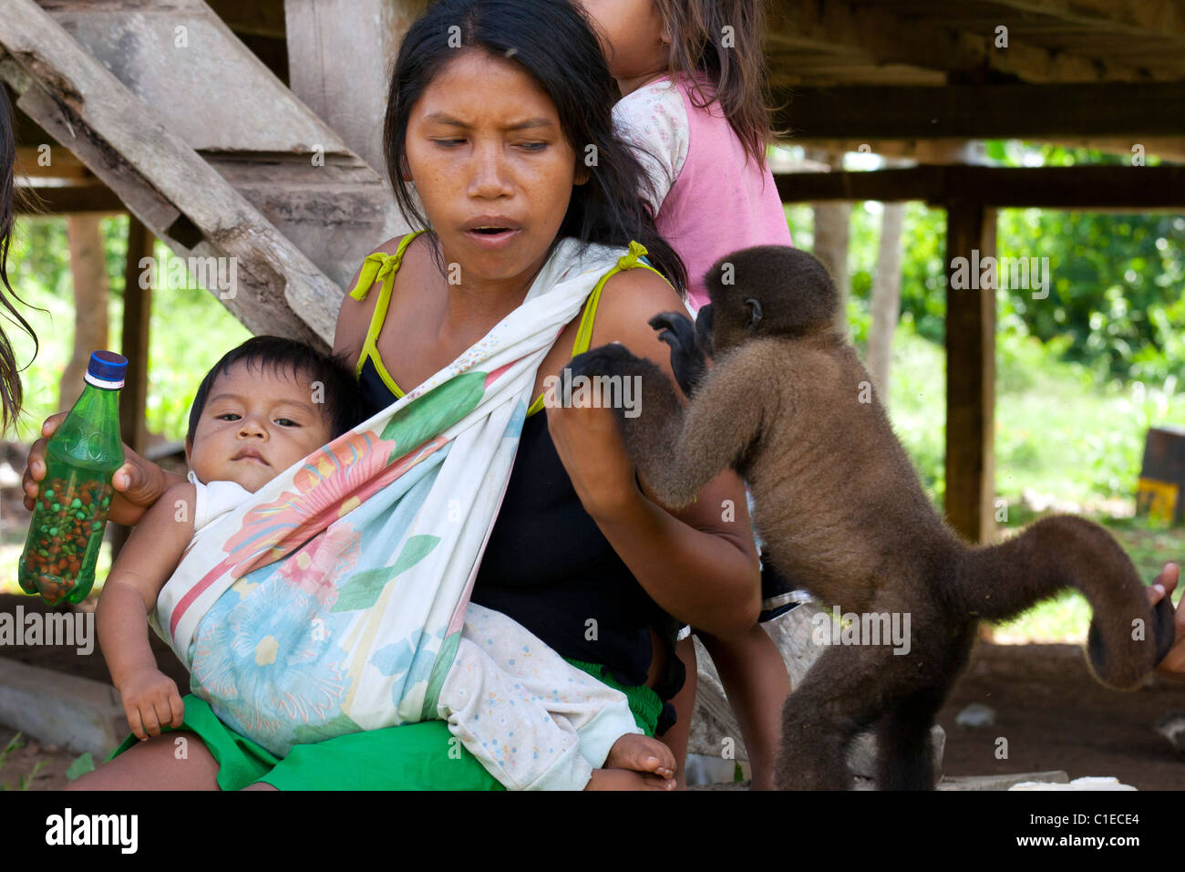 Siona people village, deep in the ecuadorian amazonian jungle (cuyabeno wildlife reserve).  Locals interact with - Stock Image
