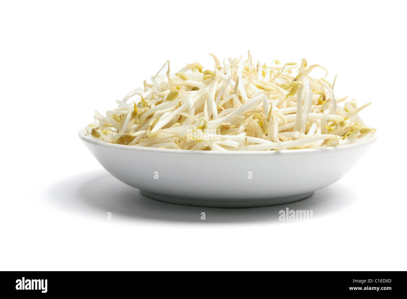 Bowl of Bean Sprouts - Stock Image