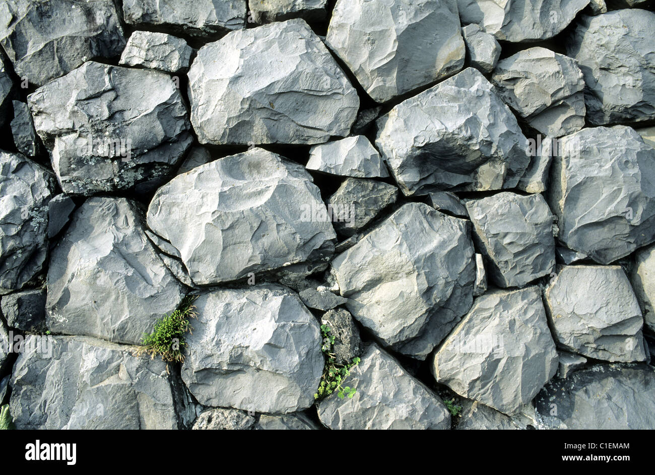 France, Lozere, wall built with columnar jointed basalt (lava) - Stock Image