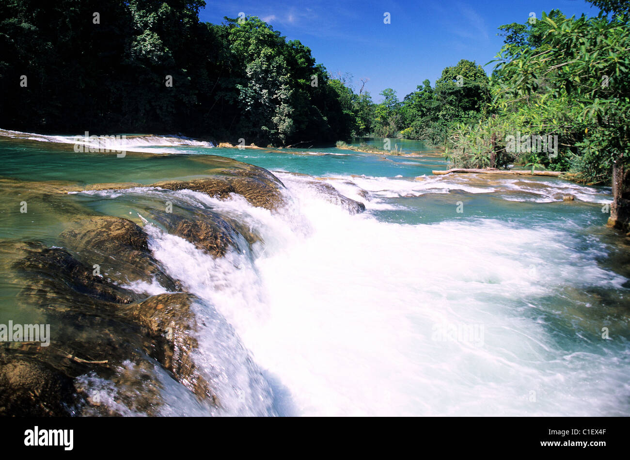 Mexico, Chiapas State, Agua Azul waterfalls - Stock Image