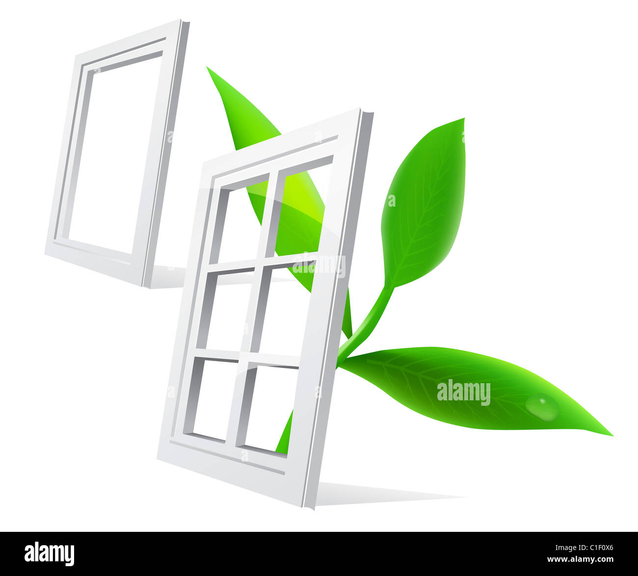 Vector window and leaf isolatde on white background Stock Photo