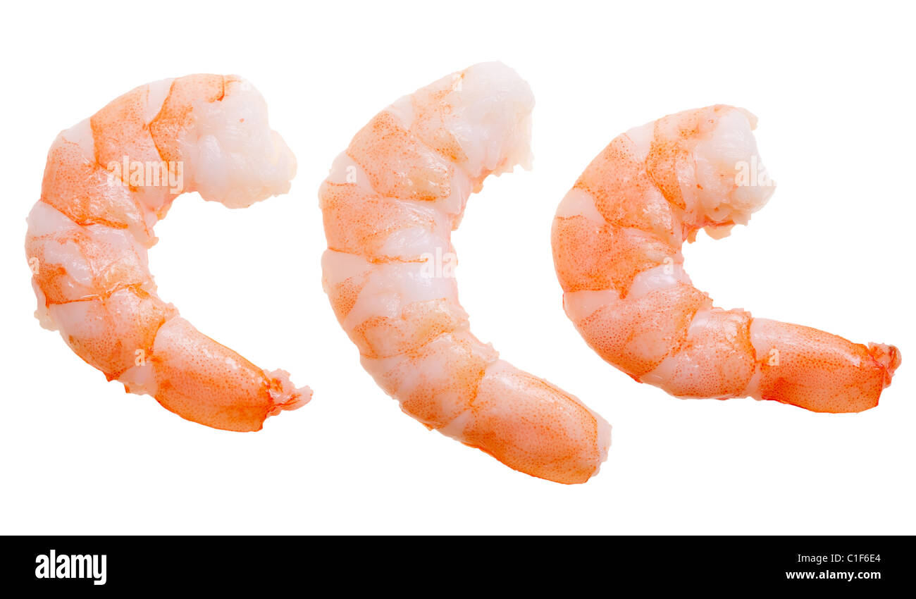 prepared shrimp isolated on a white background - Stock Image