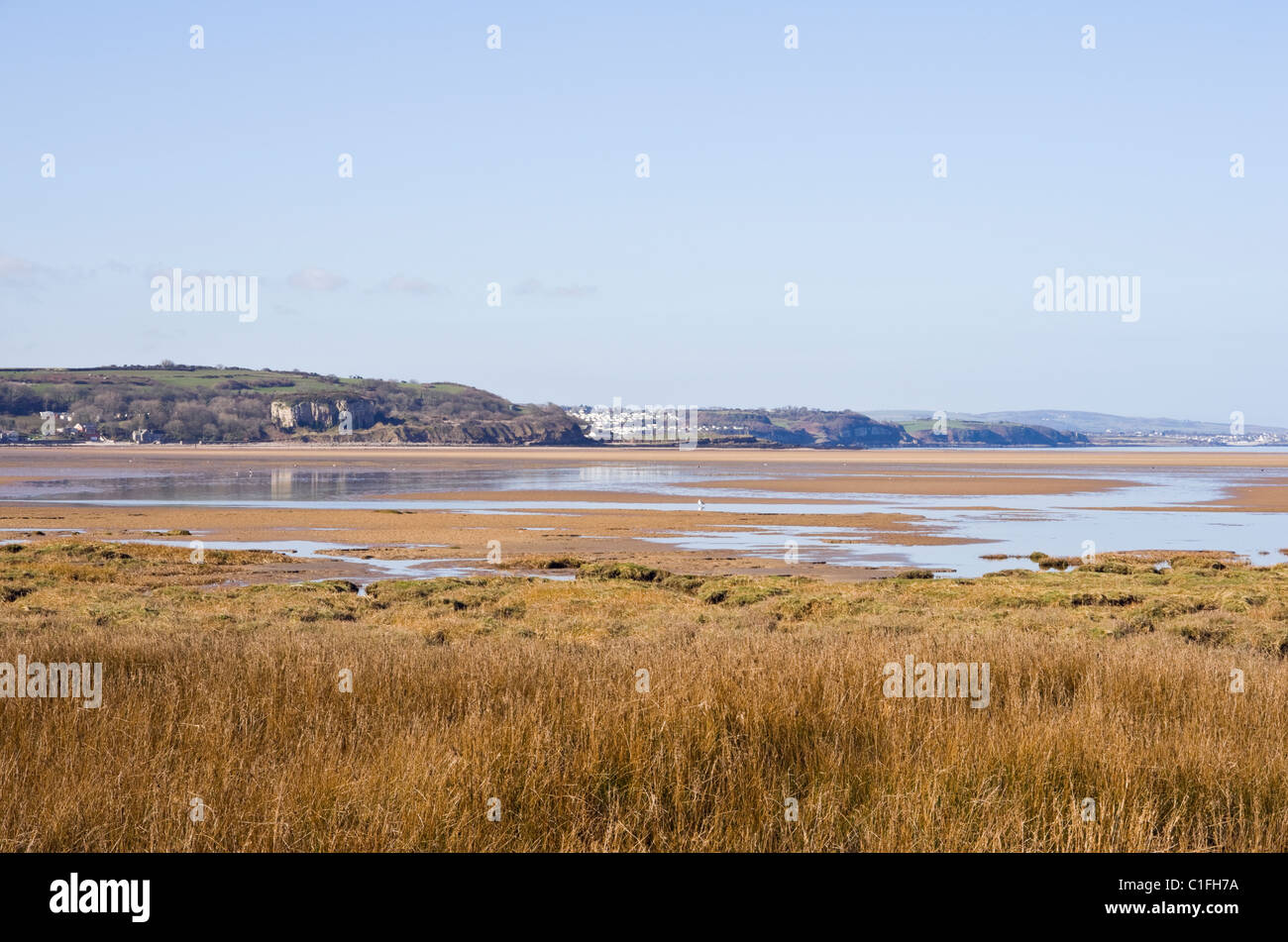 View across Red Wharf Bay salt marsh saltings in AONB. Pentraeth, Isle of Anglesey, North Wales, UK, Britain. Stock Photo