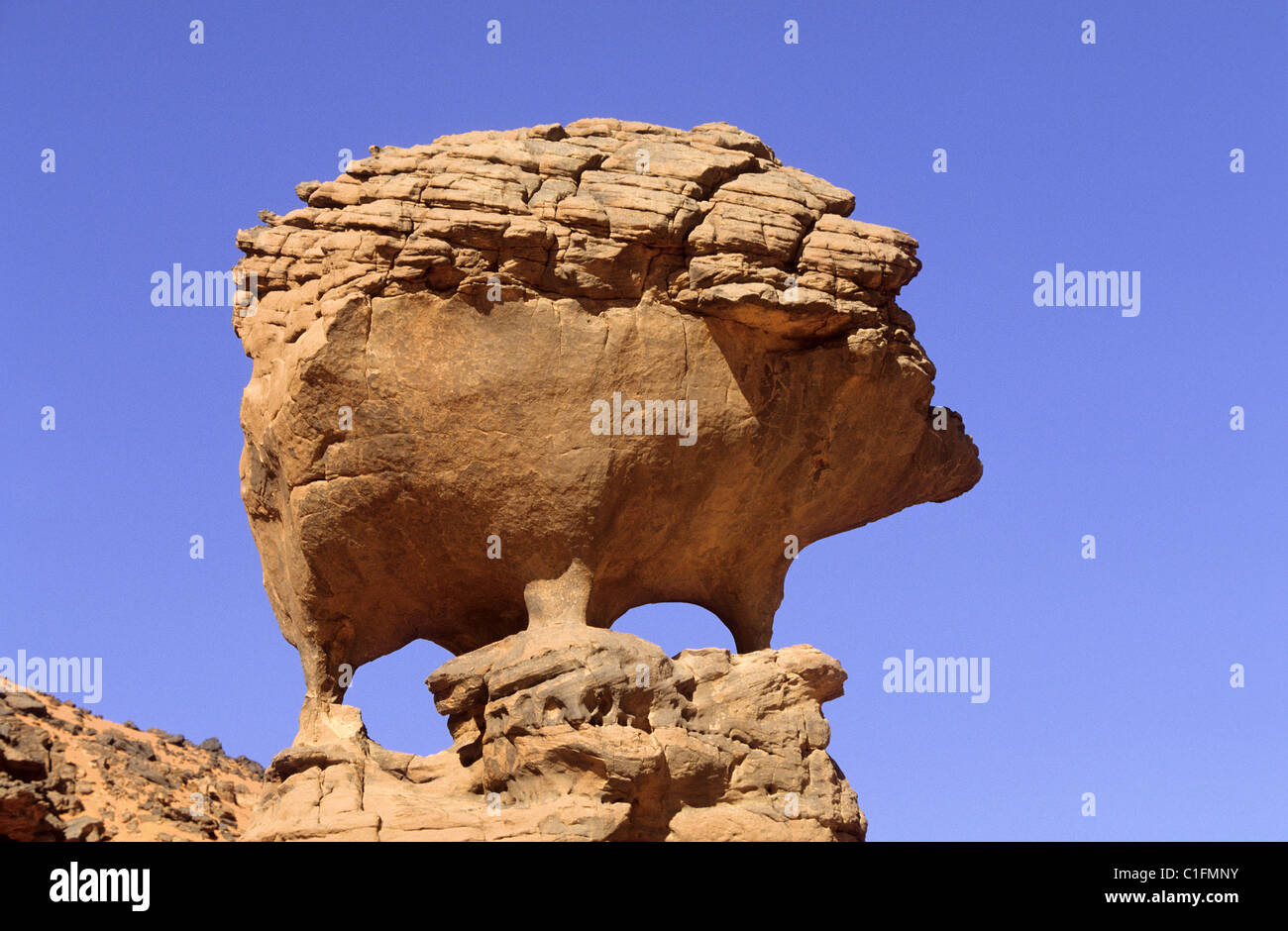 Algeria, Sahara, Tadrart region, the Hedgehog Rock carved by nature Stock Photo