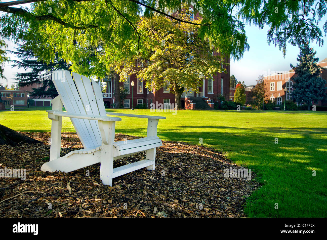 Wooden Deck Chair Under the Tree in Public Parks - Stock Image