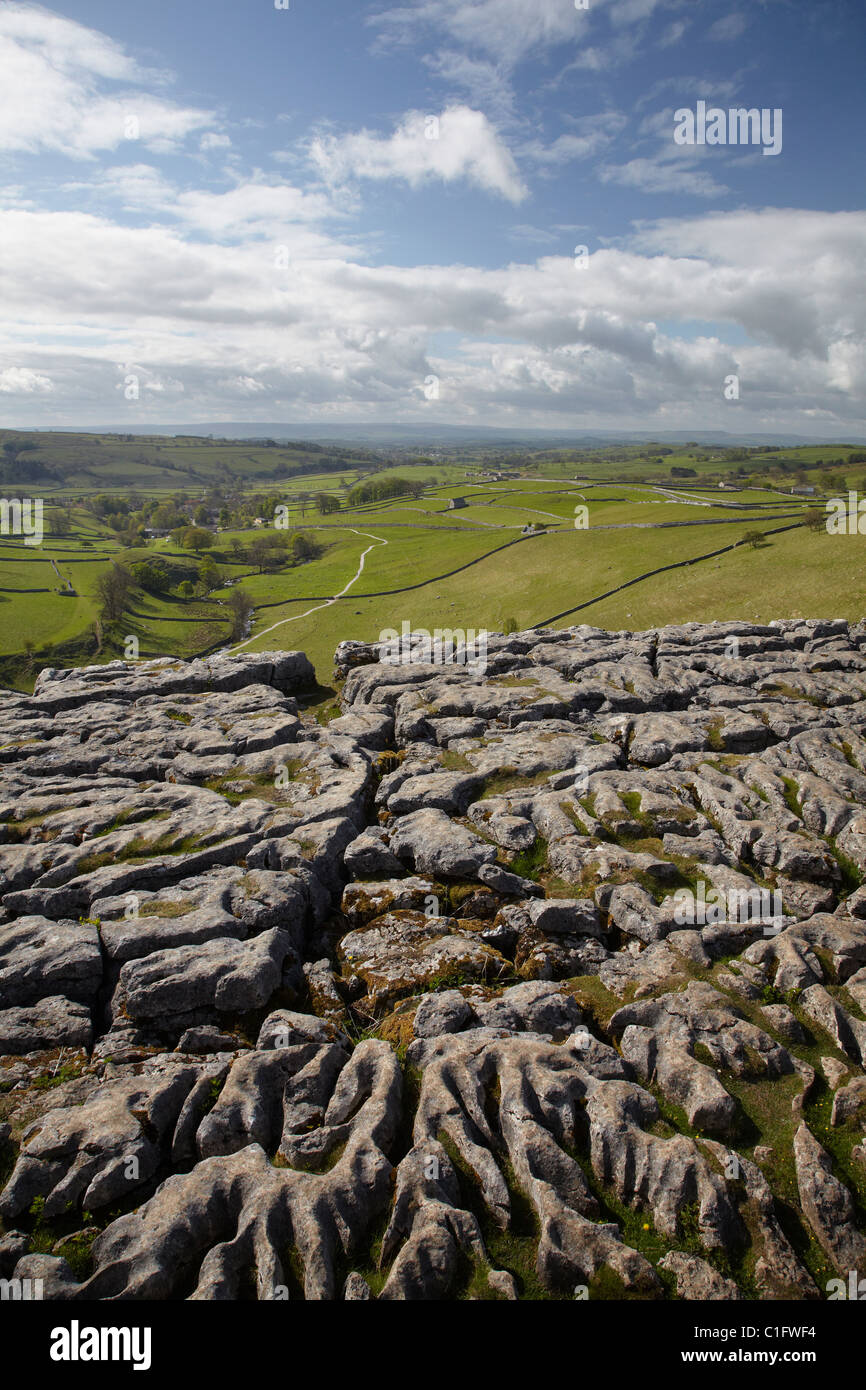 Limestone Pavement, Malham Cove, near Malham Village, Yorkshire Dales National Park, North Yorkshire, England, United - Stock Image
