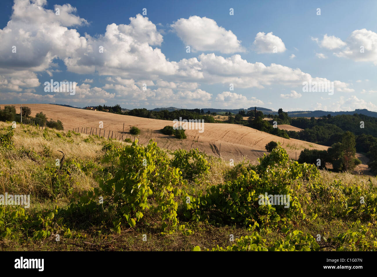 Tuscany hills and sky with fluffy clouds. Stock Photo