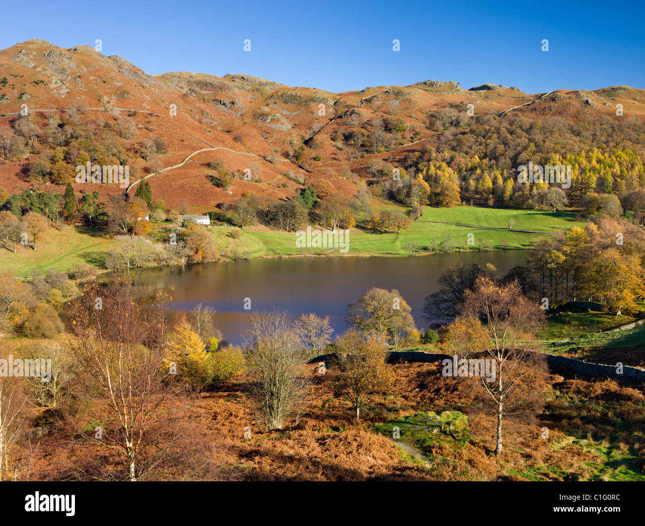 Loughrigg Tarn and Fell taken from Crag Head, Lake District National Park, Cumbria, England. Autumn (November) 2010. - Stock Image