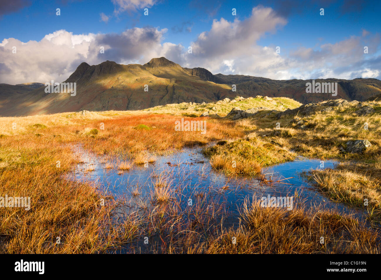 The Langdale Pikes, Lake District National Park, Cumbria, England. Autumn (November) 2010. - Stock Image