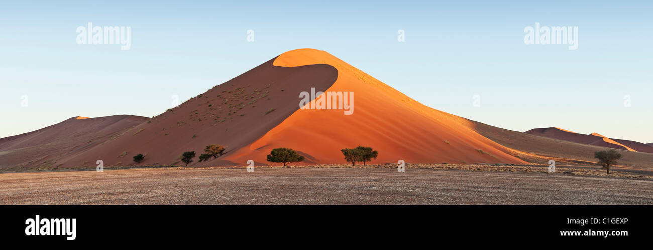 View of the sand dunes at Sossusvlei in the Namib desert. Namib - Stock Image