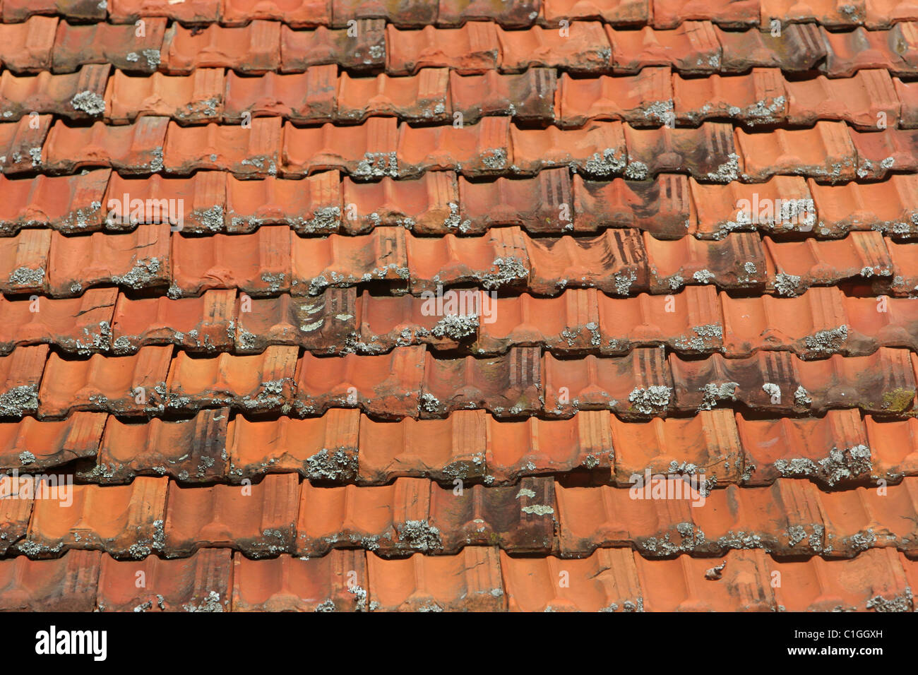 Clay roof tile stock photos clay roof tile stock images for Roof tile patterns