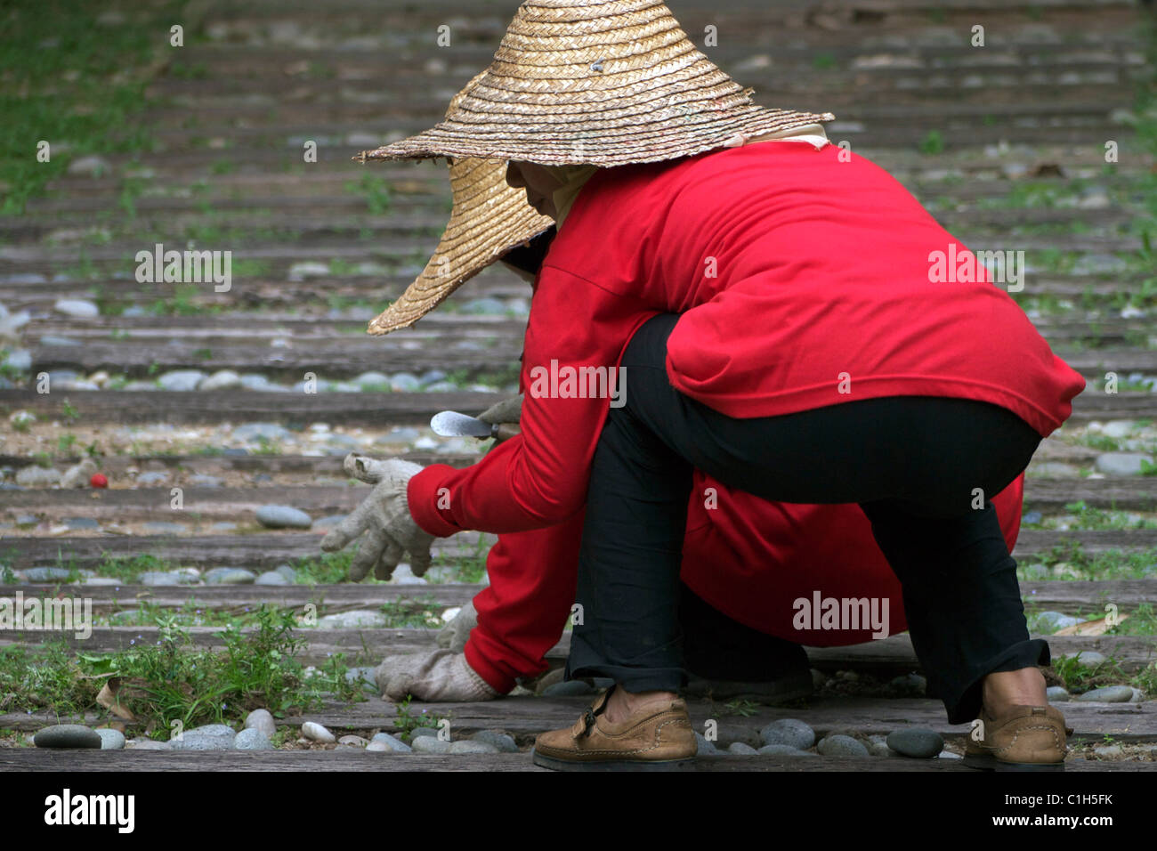 Two gardeners Stock Photo