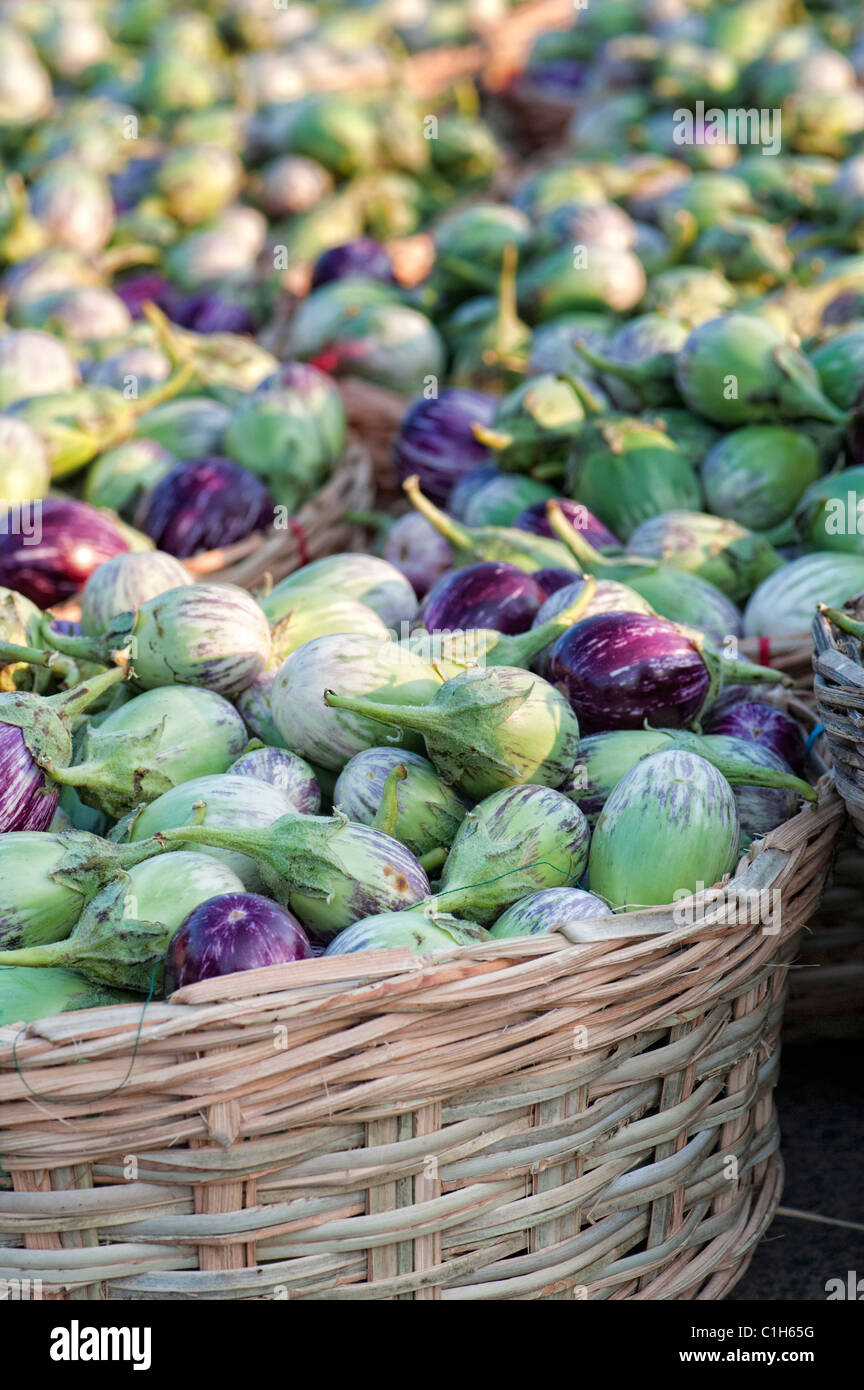 Indian vegetables. Eggplant / Aubergine or Brinjal in baskets at an Indian market. Andhra pradesh, India - Stock Image
