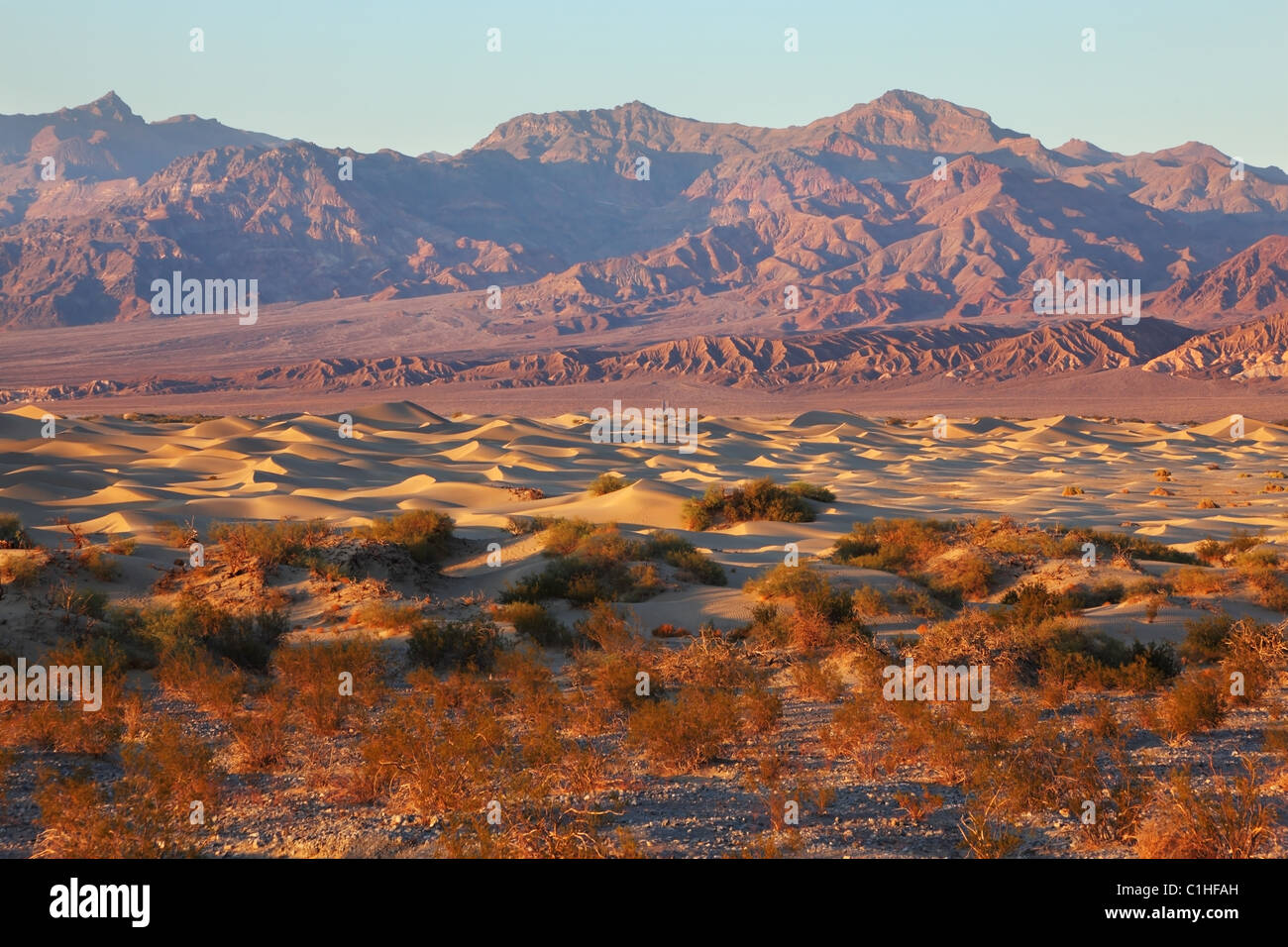 A unique place in Death Valley - Mesquete Flat Sand Dunes - Stock Image