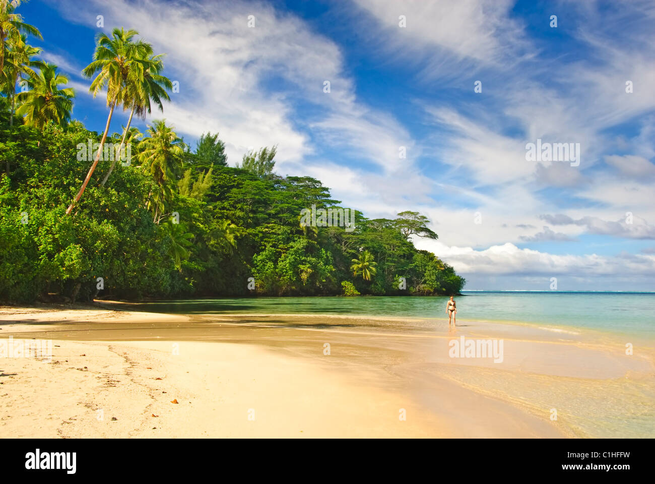 tropical beach in french polynesia - Stock Image
