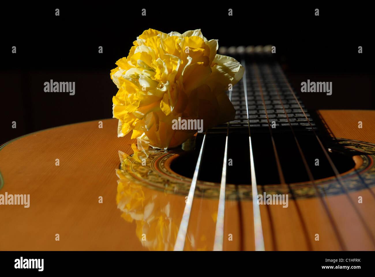 Guitar Sounds Stock Photos & Guitar Sounds Stock Images - Alamy
