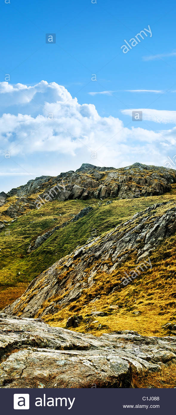 wild terrain - Stock Image