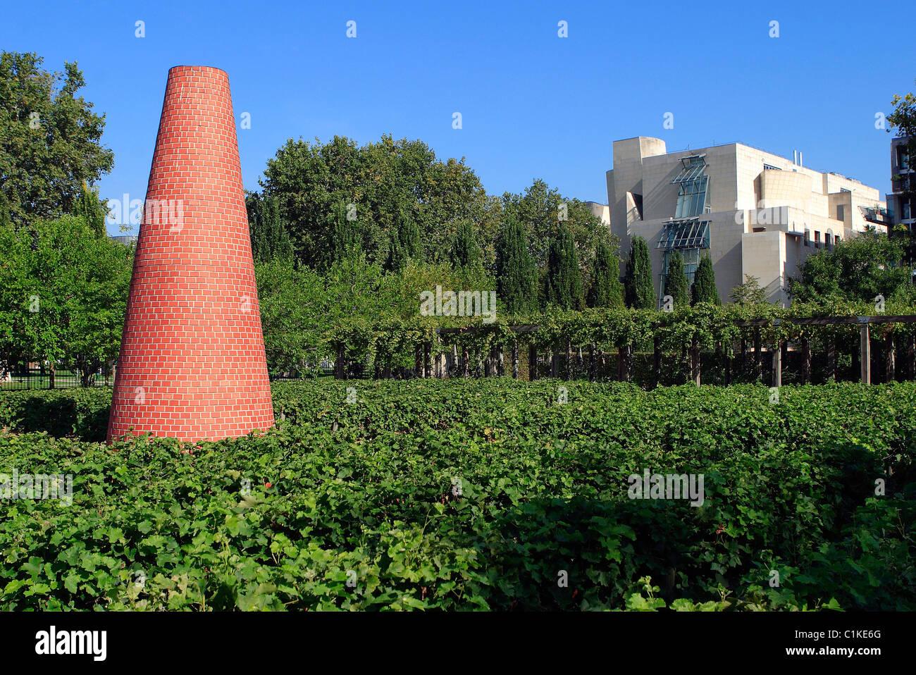 France, Paris, Park of Bercy, vineyard - Stock Image