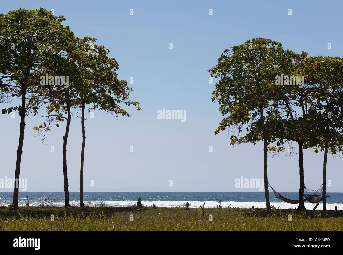 Hammocks under the trees on the beach, Playa San Miguel, Nicoya Peninsula, Costa Rica - Stock Image