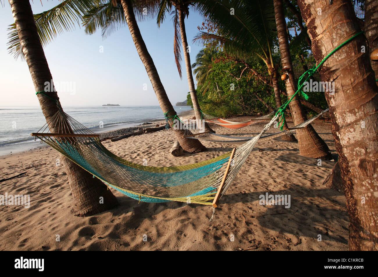 Hammocks under the palm trees on a tropical beach, Montezuma, Nicoya Peninsula, Costa Rica - Stock Image