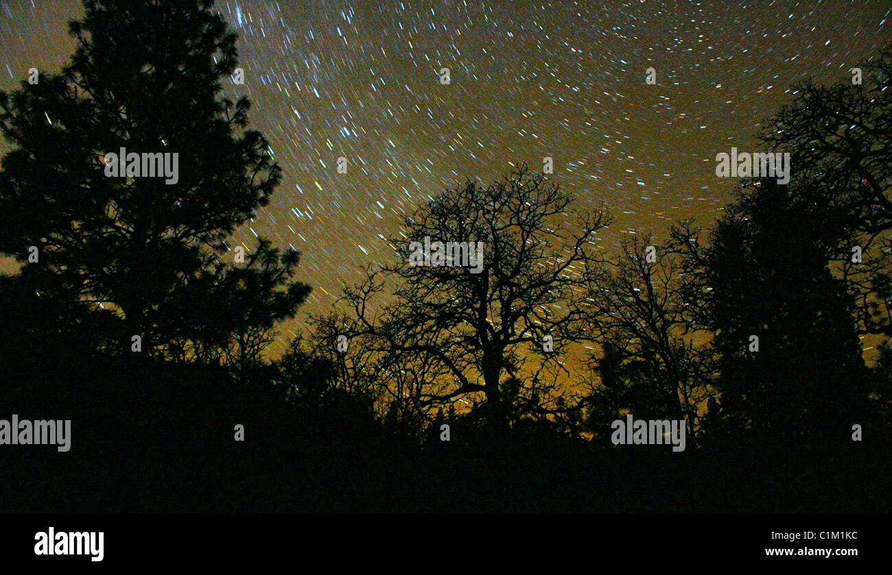 40,250.07155 A clear night in early spring, with thousands of stars swirling around over the black outline of conifer - Stock Image