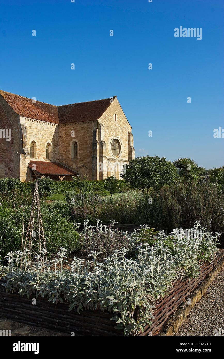 France, Cher, Berry, Menetou Couture (Val d'Aubois), Fontmorigny abbey, the medieval gardens - Stock Image