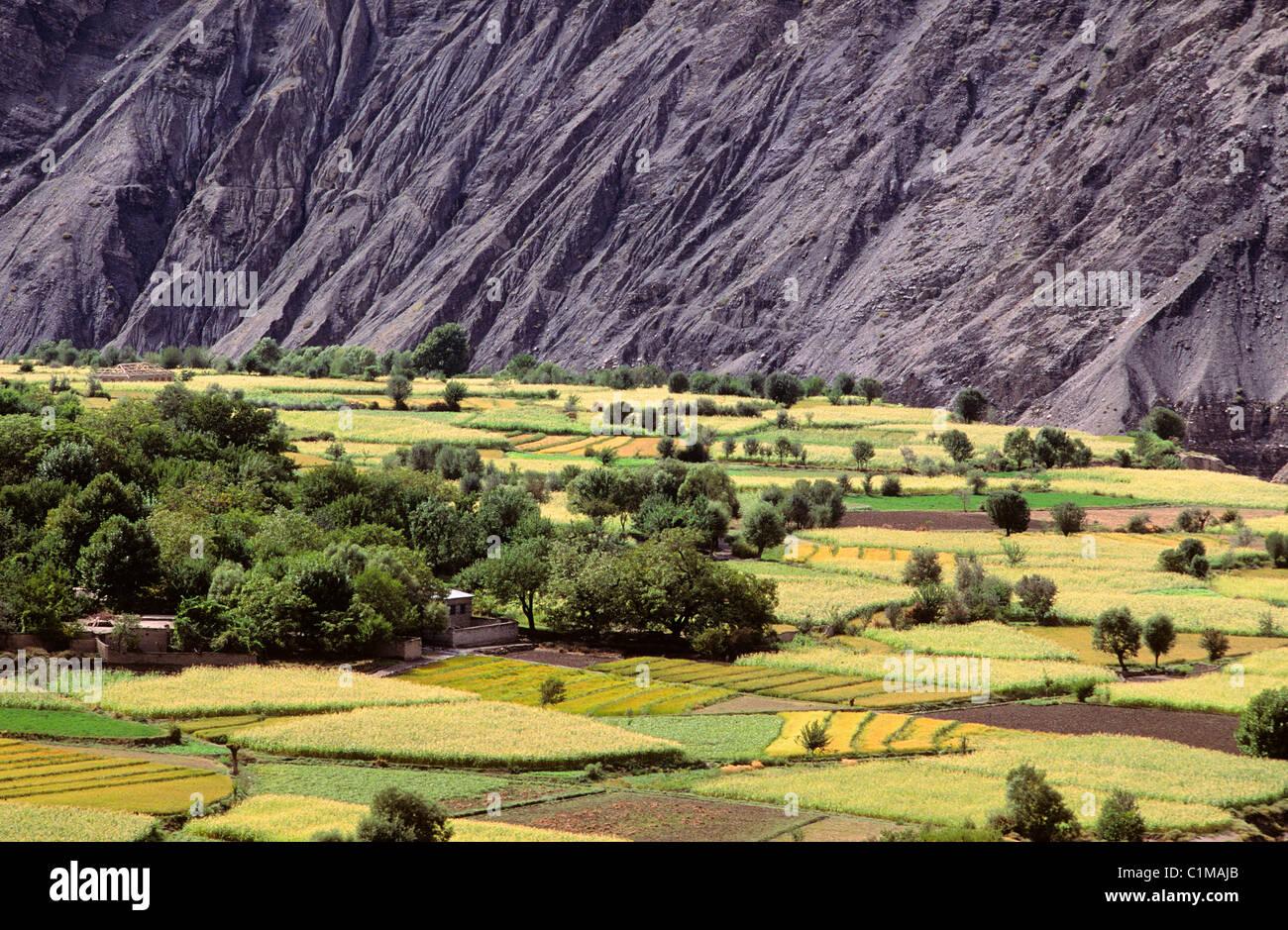 Pakistan, North Region, region of Chitral - Stock Image