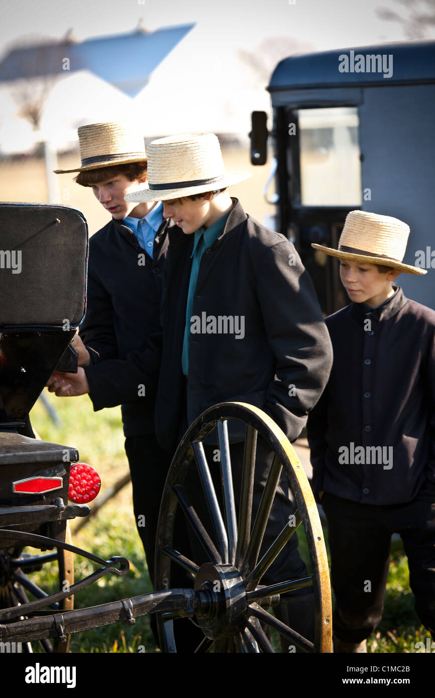 Young Amish men inspect a horse buggy during the Annual Mud Sale to support the Fire Department in Gordonville, Stock Photo