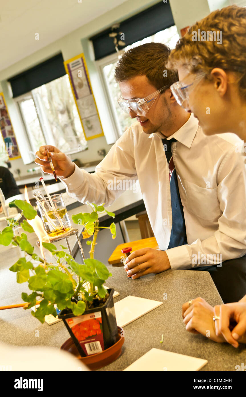 Two sixth form Pupils doing an experiment in a A level biology science practical class in a secondary school UK Stock Photo