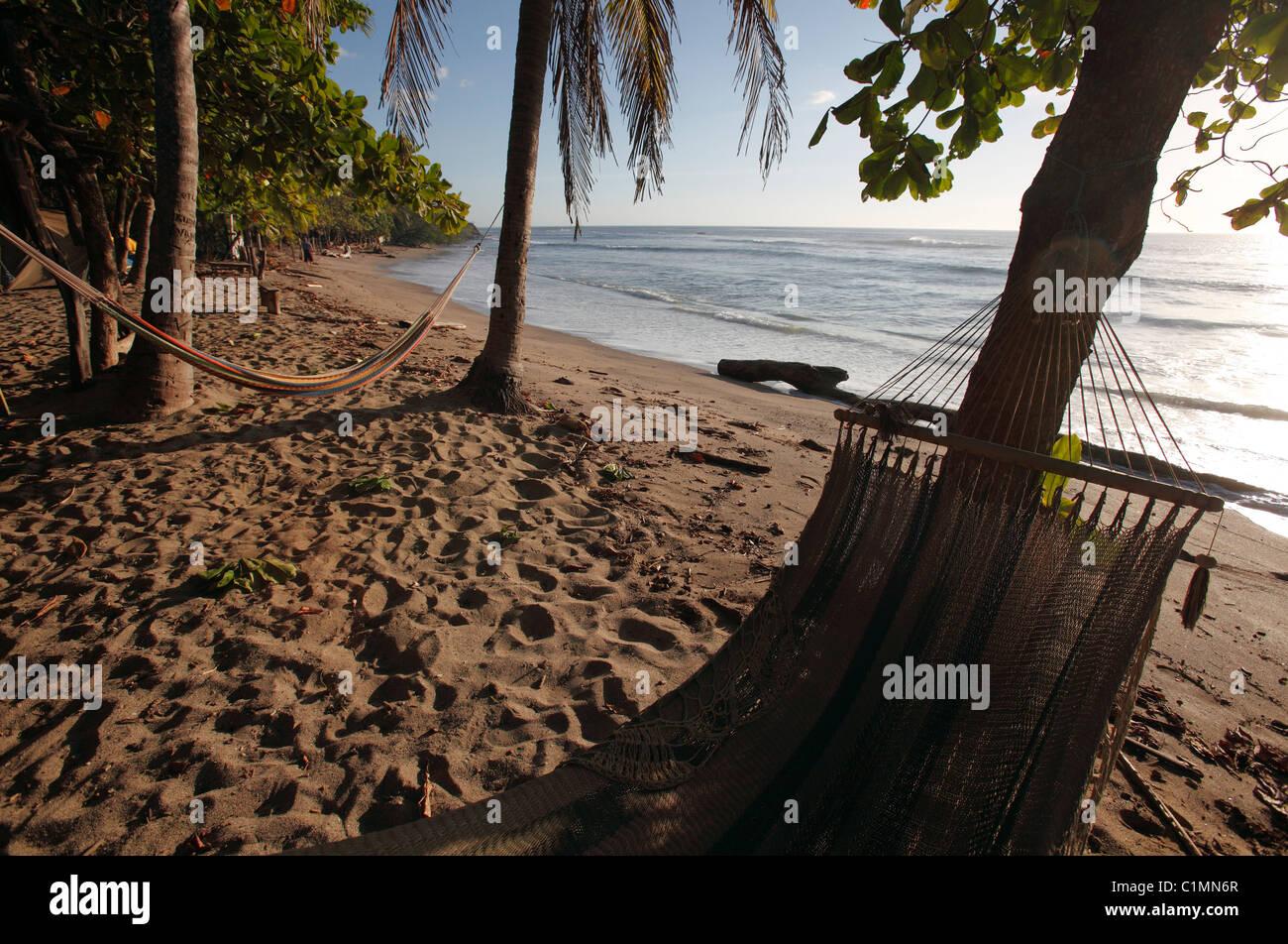 Hammocks under the palm trees, Playa Avellanas, Nicoya Peninsula, Costa Rica - Stock Image