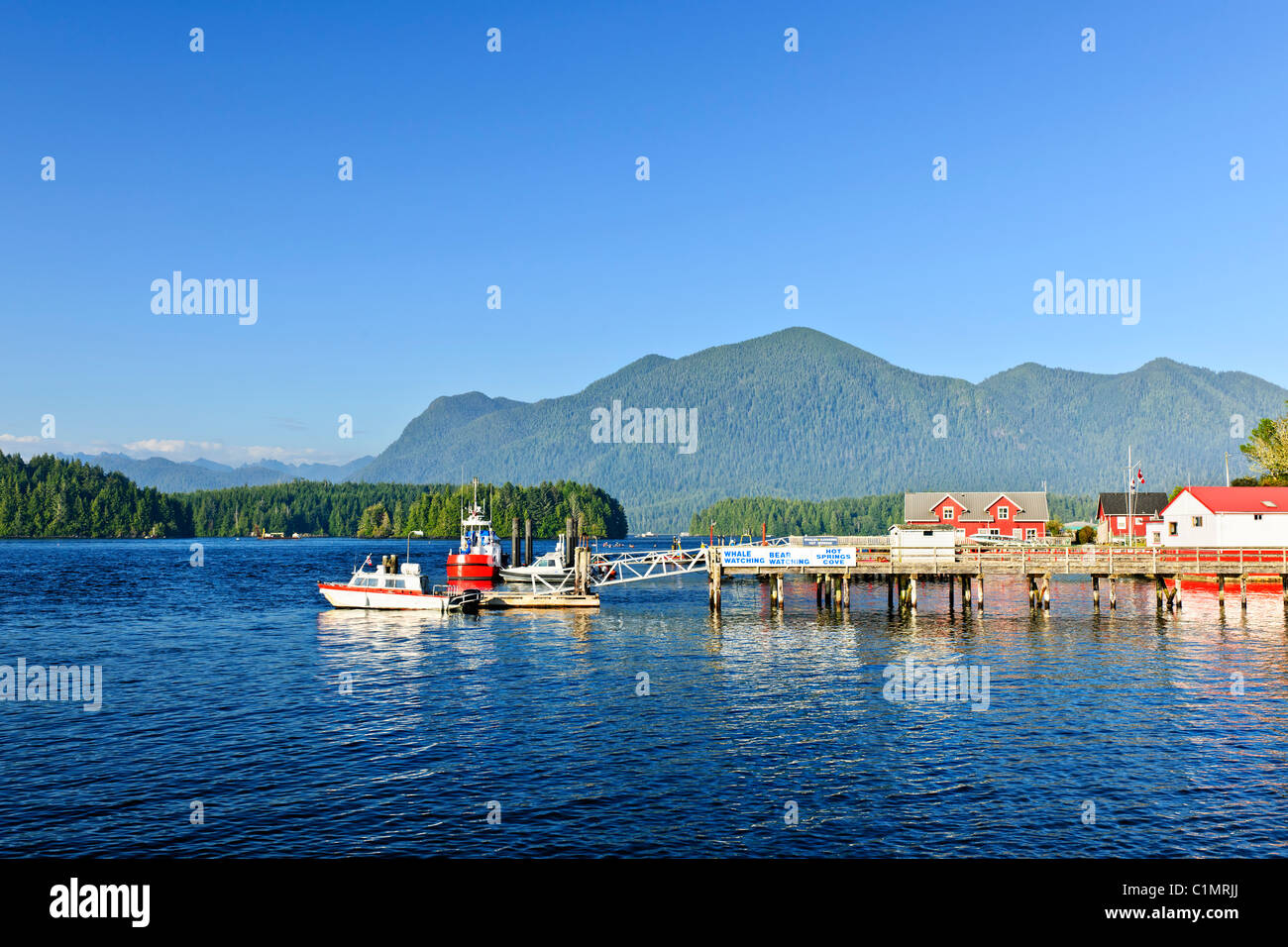 Boats at dock in Tofino on Pacific coast of British Columbia, Canada - Stock Image