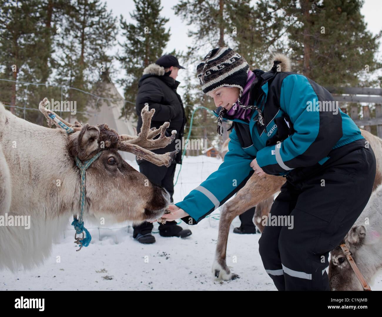 3ee9f9a6c24 Polar Animals Animal Adventure Arctic Traditional Clothing Deer ...