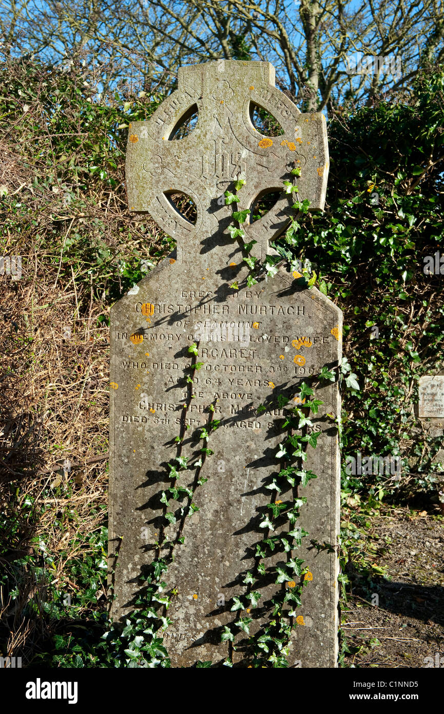 Young ivy shoots beginning to crawl up an old gravestone in the cemetery at Skerries, north County Dublin, Ireland - Stock Image
