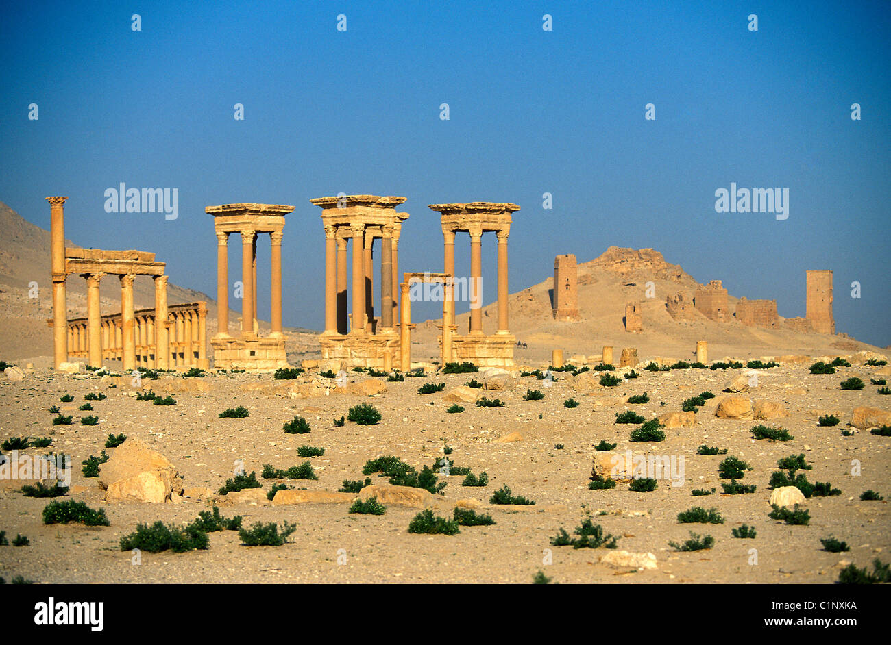 Syria Palmyra Site Listed As World Heritage By Unesco Stock