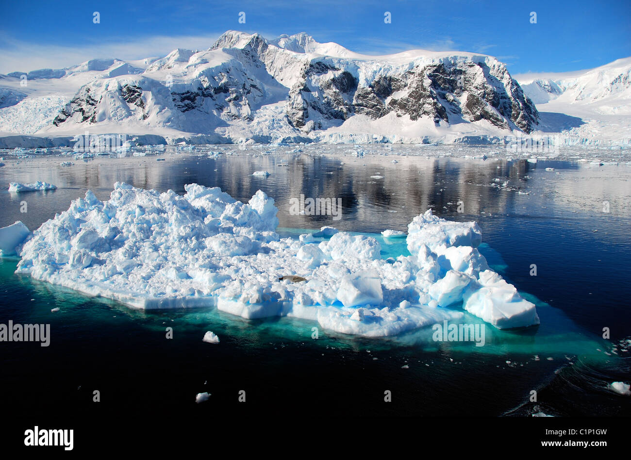 iceberg in antarctic landscape - Stock Image