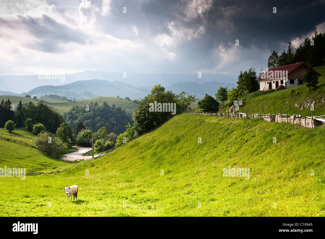 Beautiful vivid and amazing landscape from romanian countryside - Stock Image