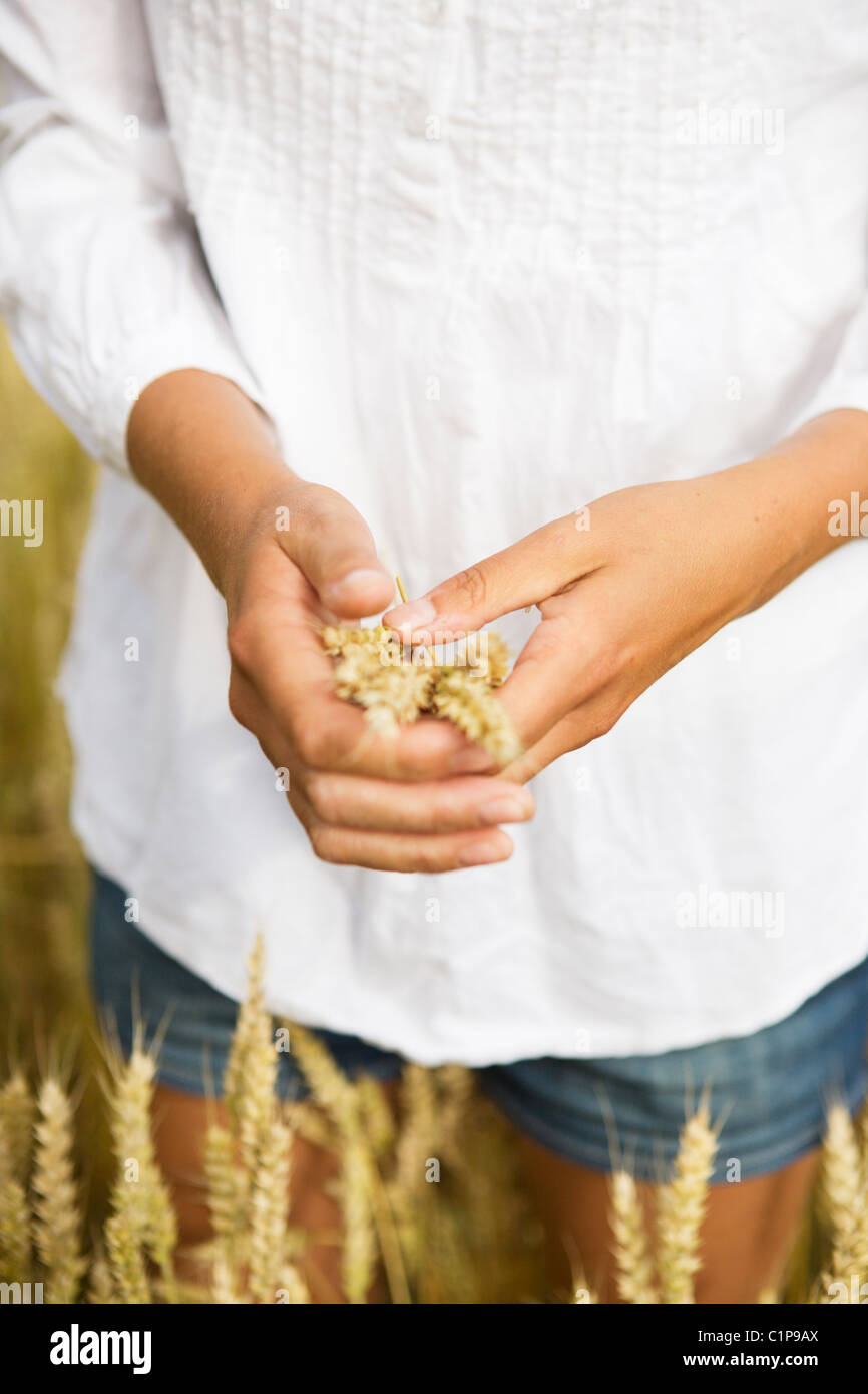Midsection of woman holding wheat stalks - Stock Image