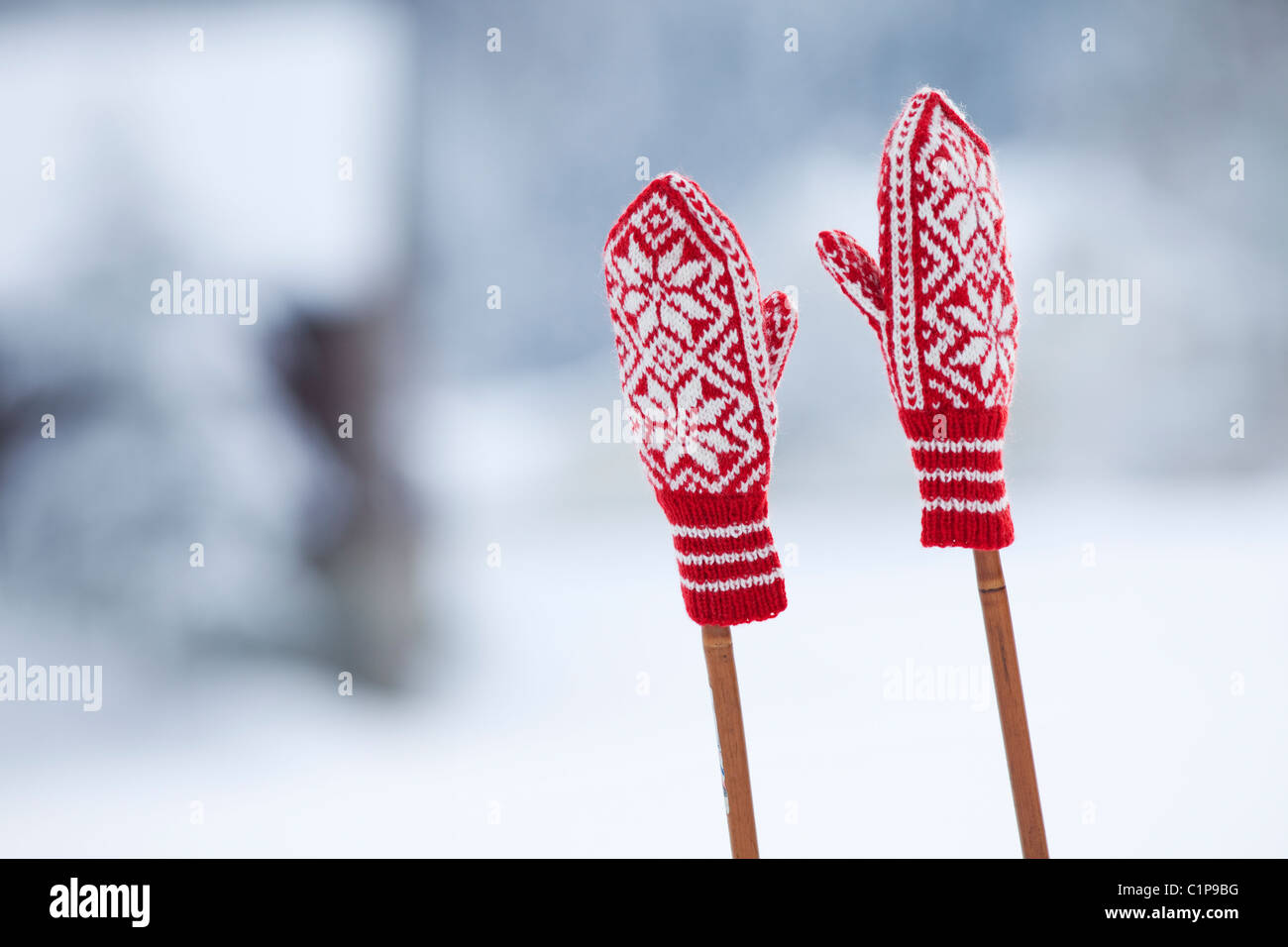 Two woolly gloves on ski poles - Stock Image