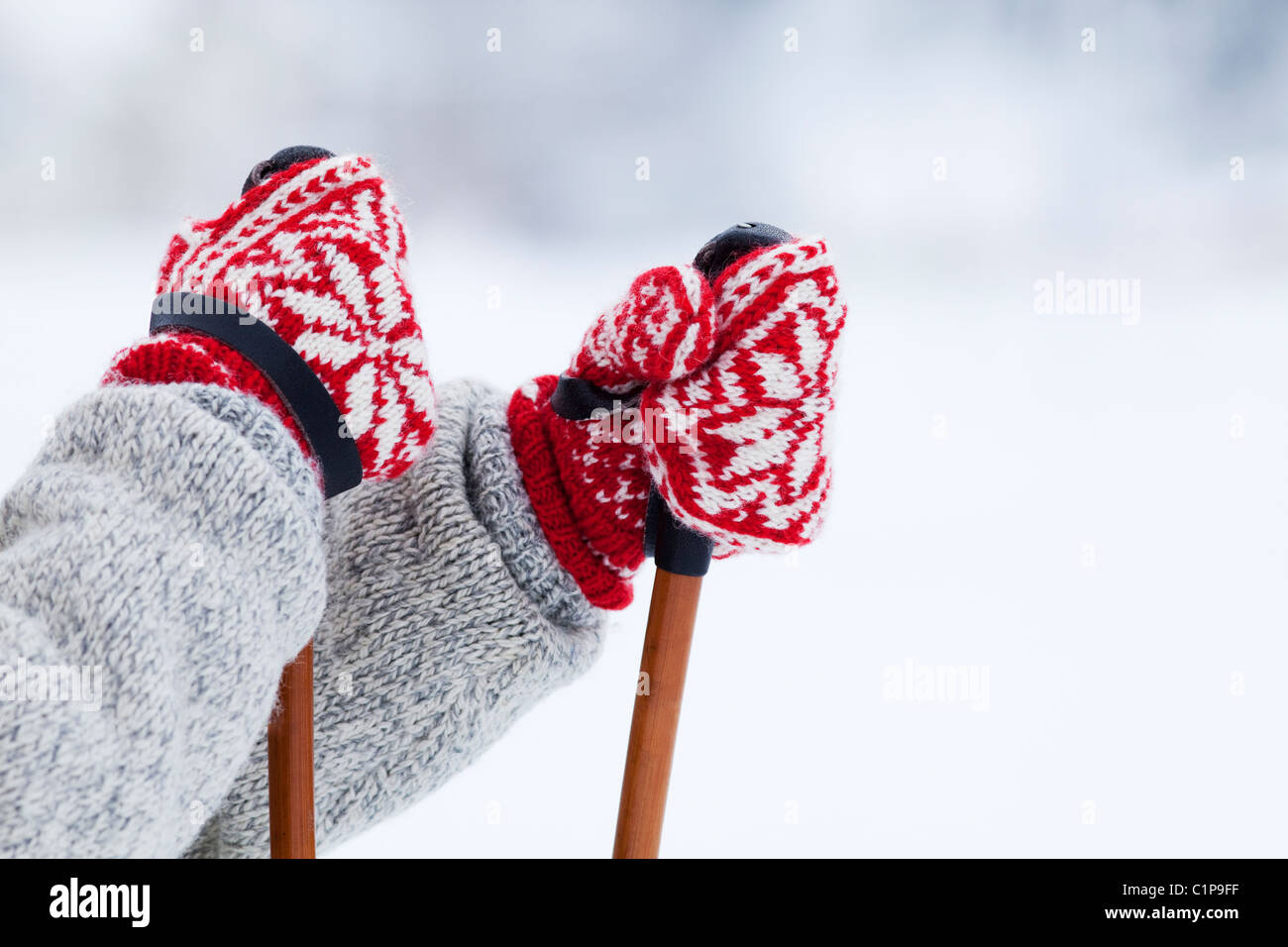 Person holding ski poles - Stock Image