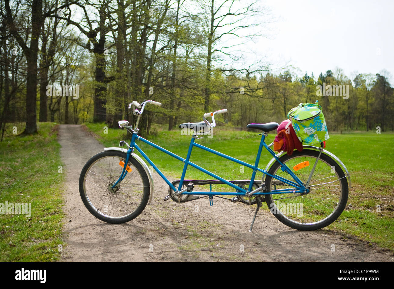 Tandem bike in forest - Stock Image