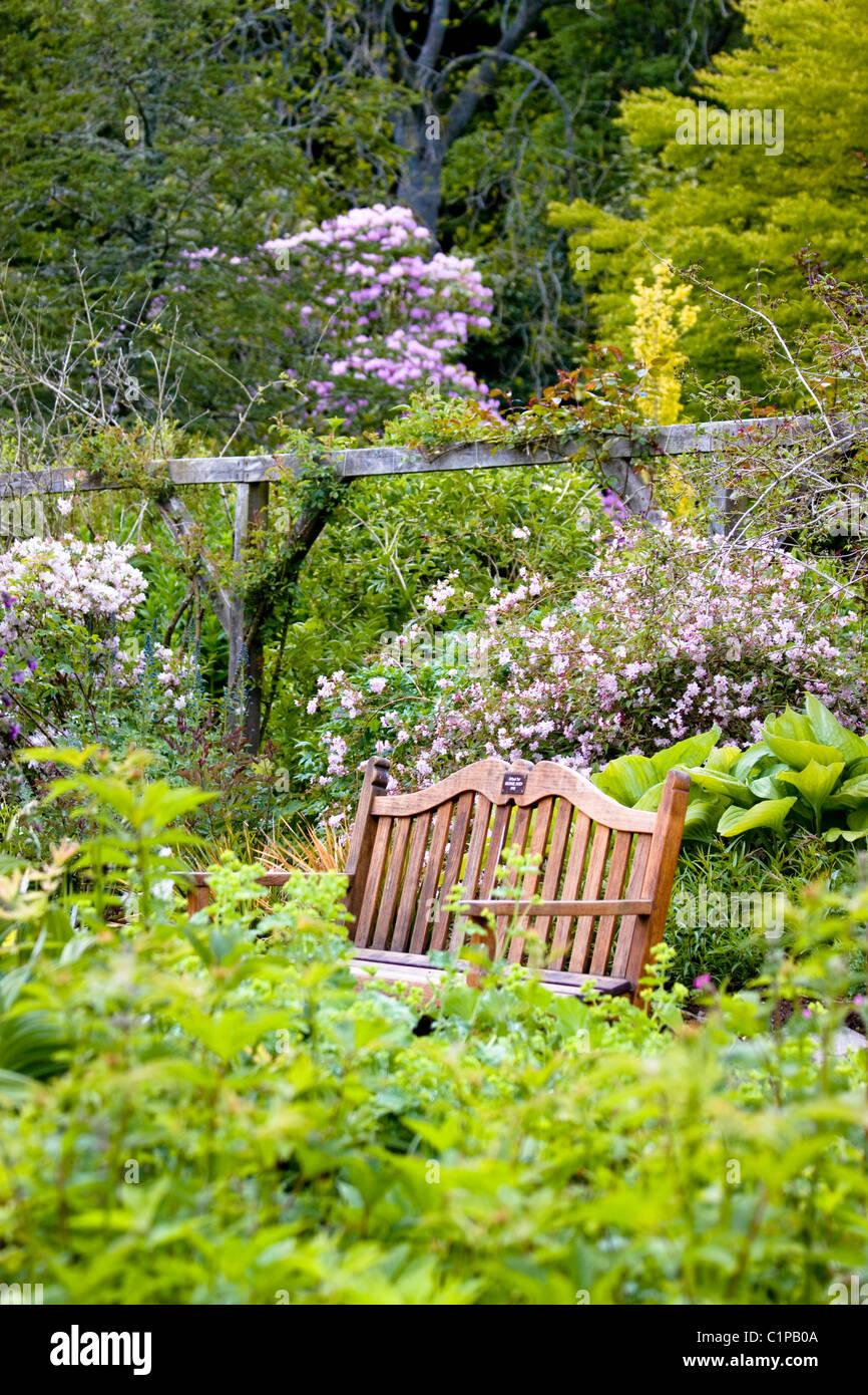 Scotland, Leith Hall, wooden bench in formal garden - Stock Image