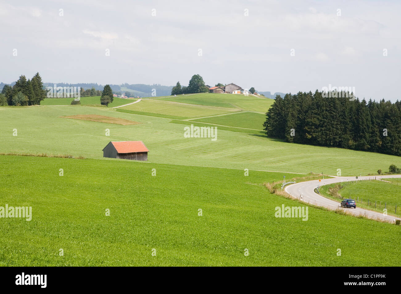 Germany, Bavaria, car on road and barn in green countryside - Stock Image