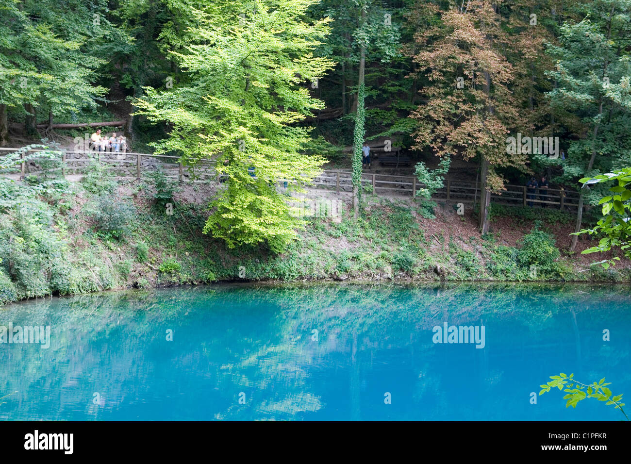 Germany, Bavaria, Blaubeuren, river Blau - Stock Image