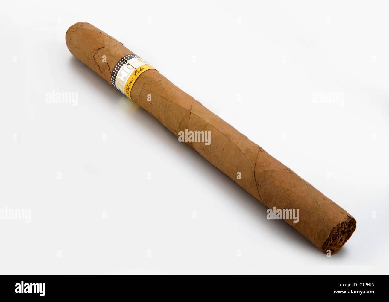 cuban cigar on white background - Stock Image