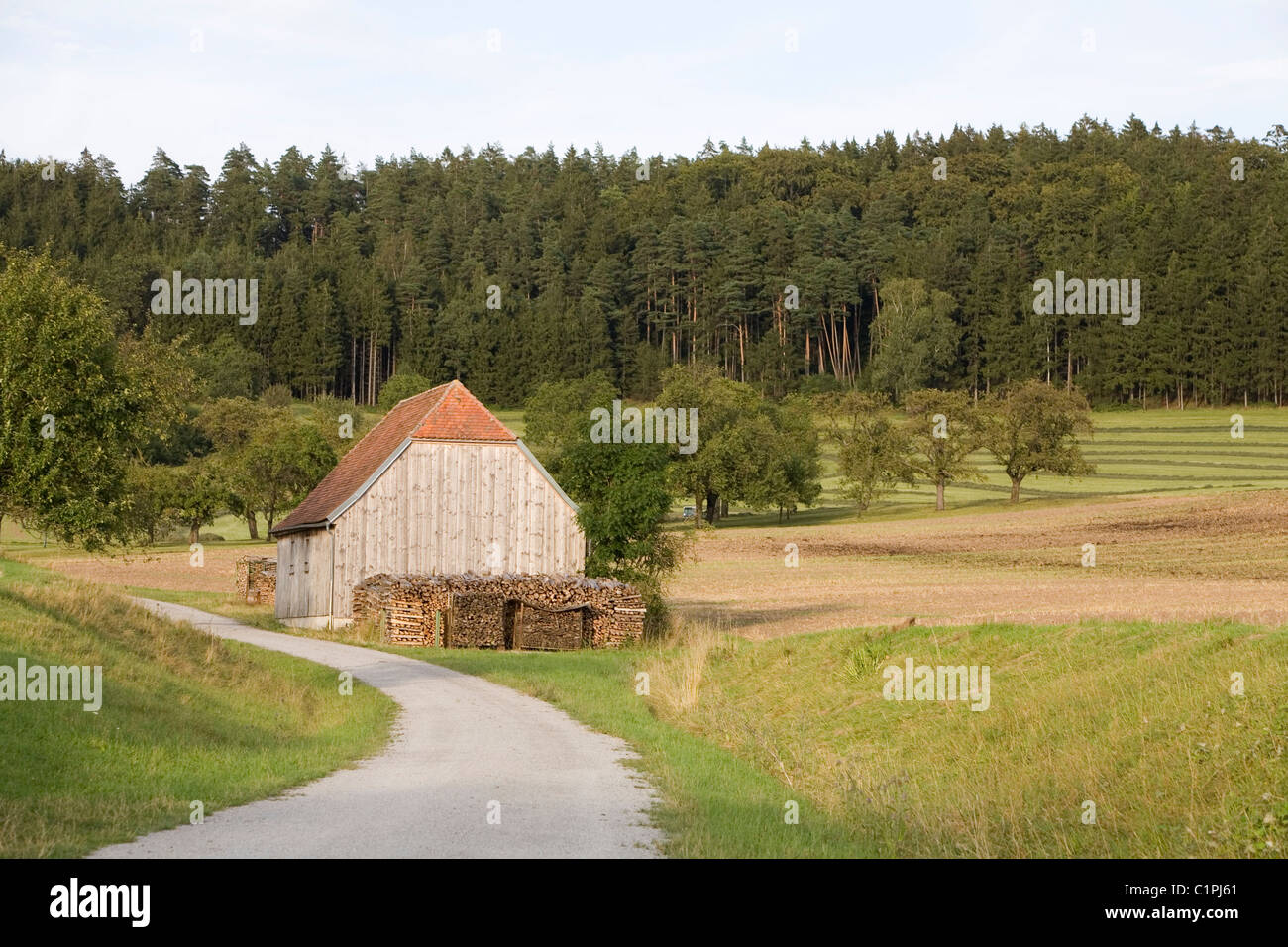 Germany, Bavaria, barn on country road - Stock Image